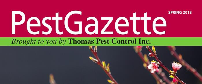Pest Gazette cover Spr 2018