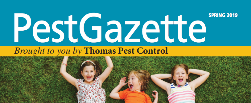 Spring 2019 Pest Gazette